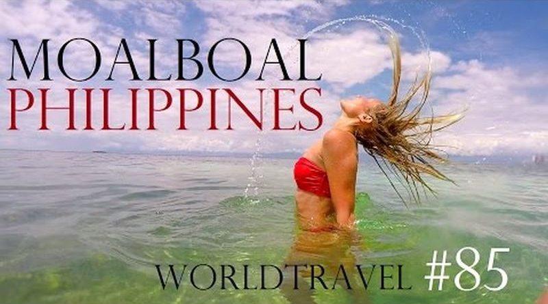 Die Philippinen im Video - Schnorcheln mit Sardinen