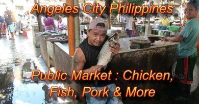 Die Philippinen im Video - Öffentlicher Markt von Angeles City