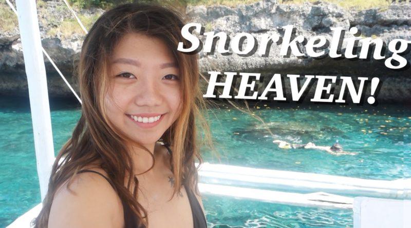 Die Philippinen im Video - Moalboal Inselhüpfen und Schnorcheln