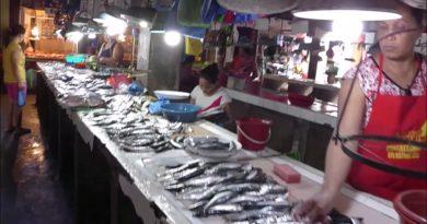 Auf dem Markt in Cordova