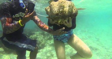 Die Philippinen im Video - Das Riesenmuschel-Schutzgebiet und die Zuchststation auf der Insel Camiguin