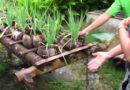 Bio-Demo Farm in Maribojoc