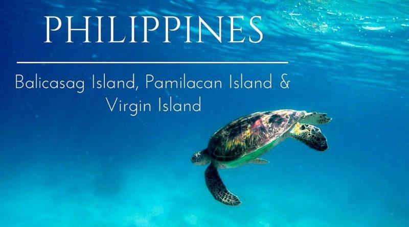 Die Philippinen im Video - Schwimmen mit Schildkröten und Delfinen