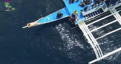 Die Philippinen im Video - Nagtabon Strand & Insel Cowrie eingefangen in einem Drohnenfilm von Sir Michael