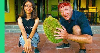Die Philippinen im Video - 5 verrückte Früchte aus Südostasien