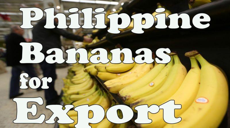 Die Philippinen im Video - 5 ausländische Märkte für philippinsche Bananen