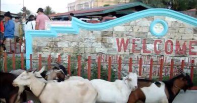Die Philippinen im Video - Am Dienstag ist der Sibalom Markttag in Antique
