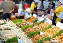 Die Philippinen im Video - Überwältigendes Streetfood 2017