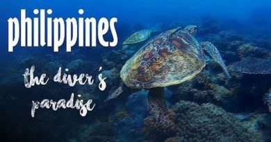 Die Philippinen im Video - Taucherparadies Philippinen