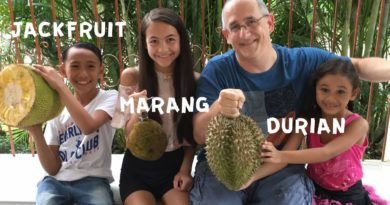 Die Philippinen im Video - Früchte probieren - Durian - Jackfruit - Marang