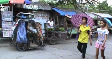 Rundgang über einen philippinsichen Markt
