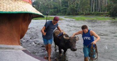 Die Philippinen im Video - Mit dem Wasserbüffel-Carabao über und durch den Fluss