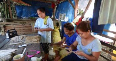 Die Philippinen im Video - Wie aus Bambus Reis wird