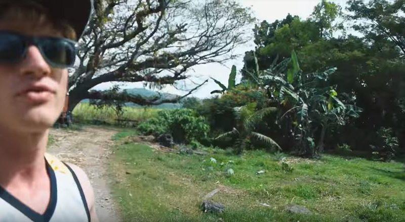 Die Philippinen im Video - Ein schöner Baum in Antique