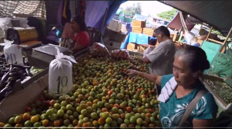 Die Philippinen im Video - Preise vom Bankerohan Markt in Davao für Gemüse und Obst