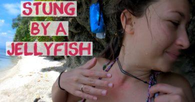 Die Philippinen im Video - Schmerzhafte Berührung mit einer Qualle im Cabagnow Cave Pool von Anda auf Bohol