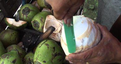 Die Philippinen im Video - Geschickter Buko-Verkäufer