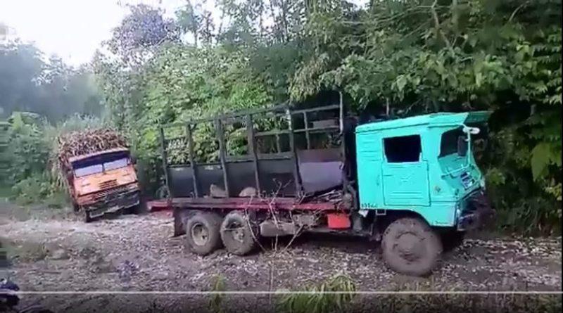 Die Philippinen im Video - Mühevolles Zuckerrohr vom Feld holen in Bukidnon