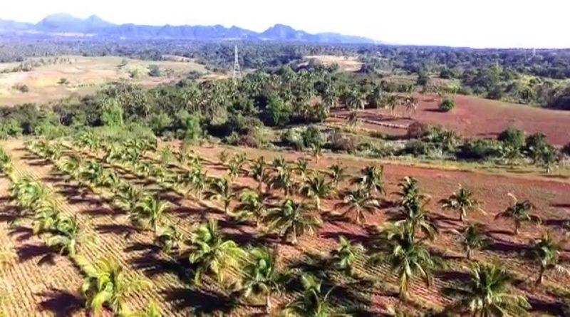 Die Philippinen im Video - Eine Farm in Bagac in Bataanaus der Luft gesehen