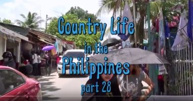 Die Philippinen im Video -Philippinisches Landleben 28