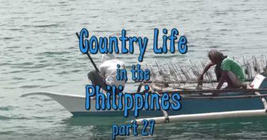 Die Philippinen im Video - Leben auf dem Lande 29 in der Inselprovinz Cebu
