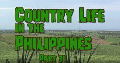 Die Philippinen im Video - Leben auf dem Lande - Teil 31