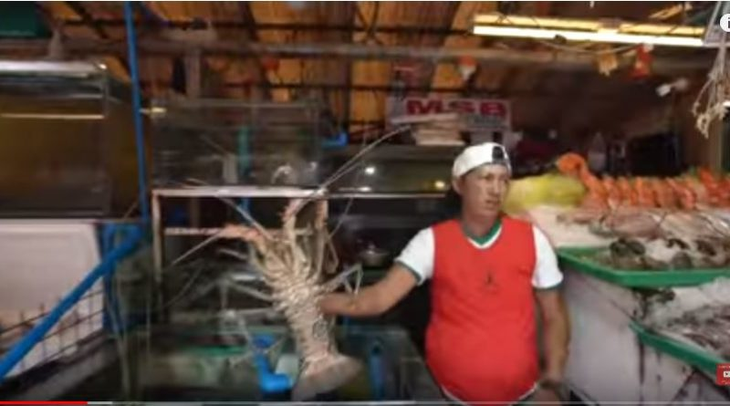 Die Philippinen im Video - Feilschen für Seafood am Dampa Sea Side Markt in Metro Manila