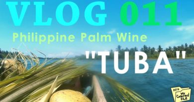 Die Philippinen im Video - Tuba - Philippinischer Palmwein