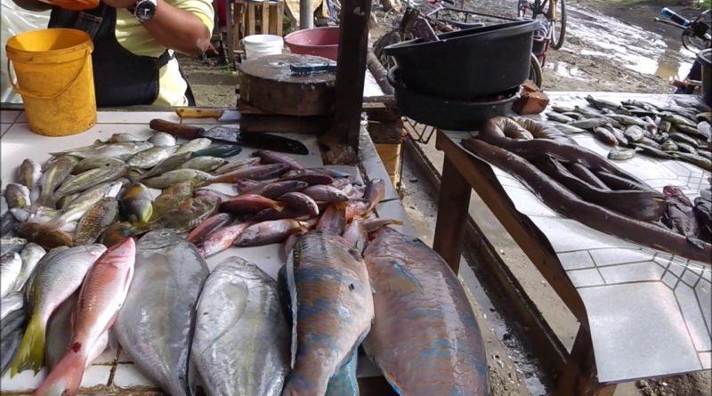 Die Philippinen im Video - Auf dem Takan Markt in Cordova auf der Insel Mactan in Cebu