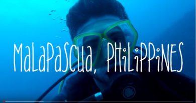 Die Phiippinen im Video - Tauchen mit Fuchshaien in Malapascua