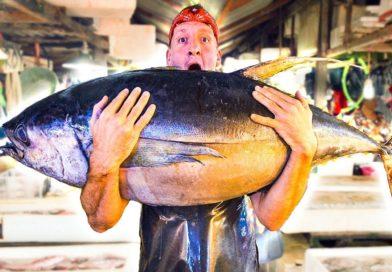 Die Philippinen im Video - Yellow Tuna - Thunfischküche von Davao