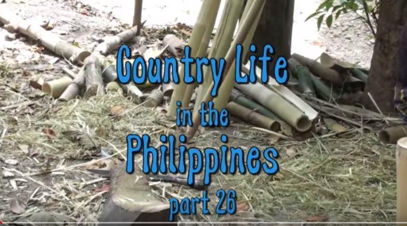 Die Philippinen im Video - Leben auf dem Lande - Teil 26