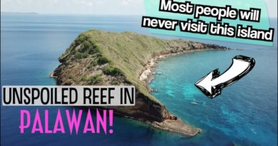 Die Philippinen im Video - Das vielleicht schönste Geheimnis von Palawan - Araceli