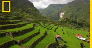 Die Philippinen im Video - Über den Reisterrassen