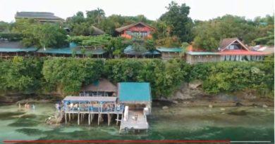 Die Philippinen im Video - Auf der Bienenfarm auf der Insel Bohol