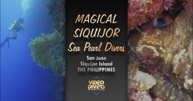 Die Philippinen im Video - Tauchen in San Juan Siquijor