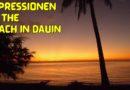 Die Philippinen im Video - Impressionen am Strand von Dauin Foto & Video von Sir Dieter Sokoll