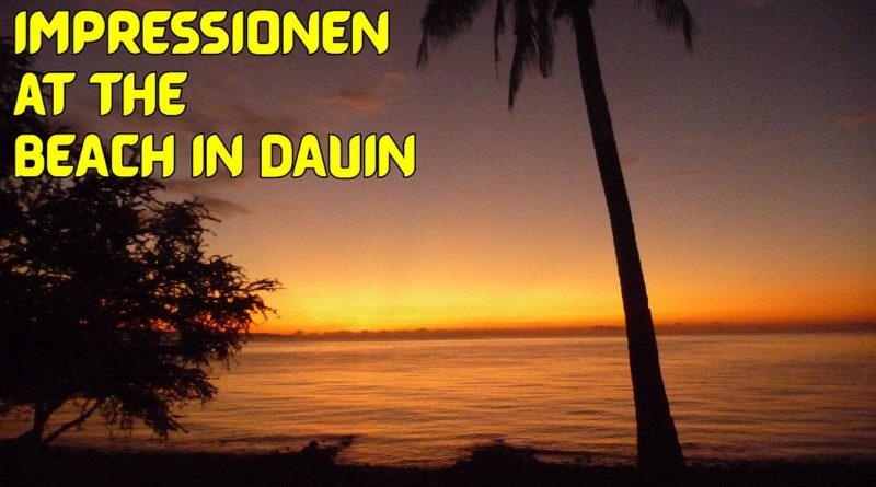 Die Philippinen im Video - Impressionen am Strand von Dauin Foto & Video von Sir Dieter Sokoll