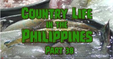 Die Philippinen im Video - Leben auf dem Lande - Teil 38