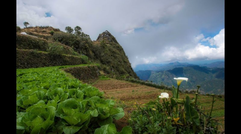 Die Philippinen im Video - Besuch in Atok Benguet