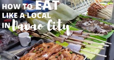 Die Philippinen im Video - Ein Foodtrip durch Davao
