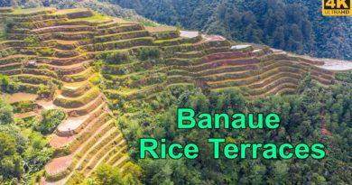 Die Philippinen im Video - Banaue Reisterrassen vor Covid