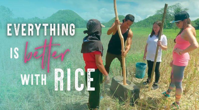 Die Philippinen im Video - Wir haben einen Tag auf der Reisfarm gearbeitet