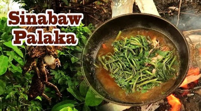 Die Philippinen im Video - Wir fangen Frösche zum Abendesssen