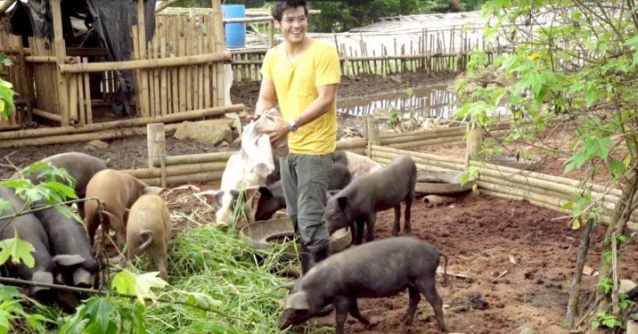 Die Philippinen im Video - Landschaften und Eindrücke aus Bukidnon
