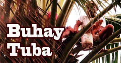 Die Philippinen im Video - Kokospilot - Buhay Tuba