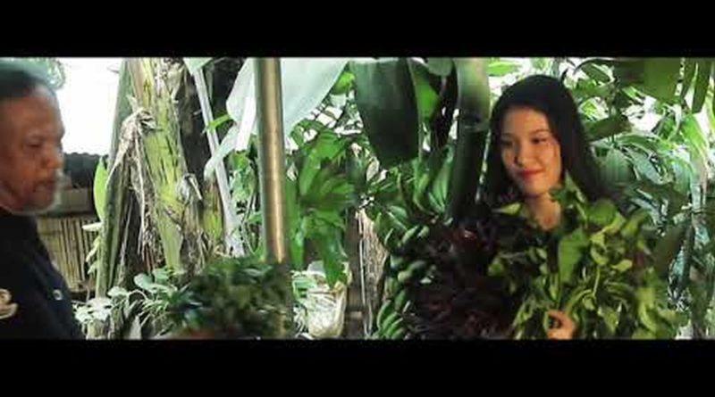 Die Philippinen im Video - Philippinische Delikatessen: Pancit Kalabuko von San Pablo