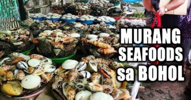 Die Philippinen im Video - Der öffentliche Markt in Tubigon