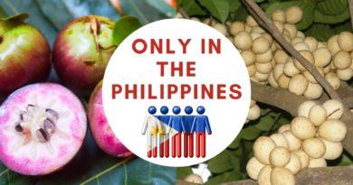 Die Philippinen im Video - 15 tropische Früchte der Philippinen zum Essen