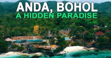 Die Philippinen im Video - Ein Paradies auf Bohol - Anda